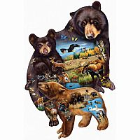 95732 Bear Family Adventure
